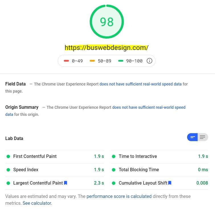 Website Design 98 google test
